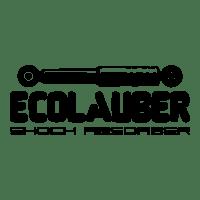 Amortecedores Ecolauber é na Pajé